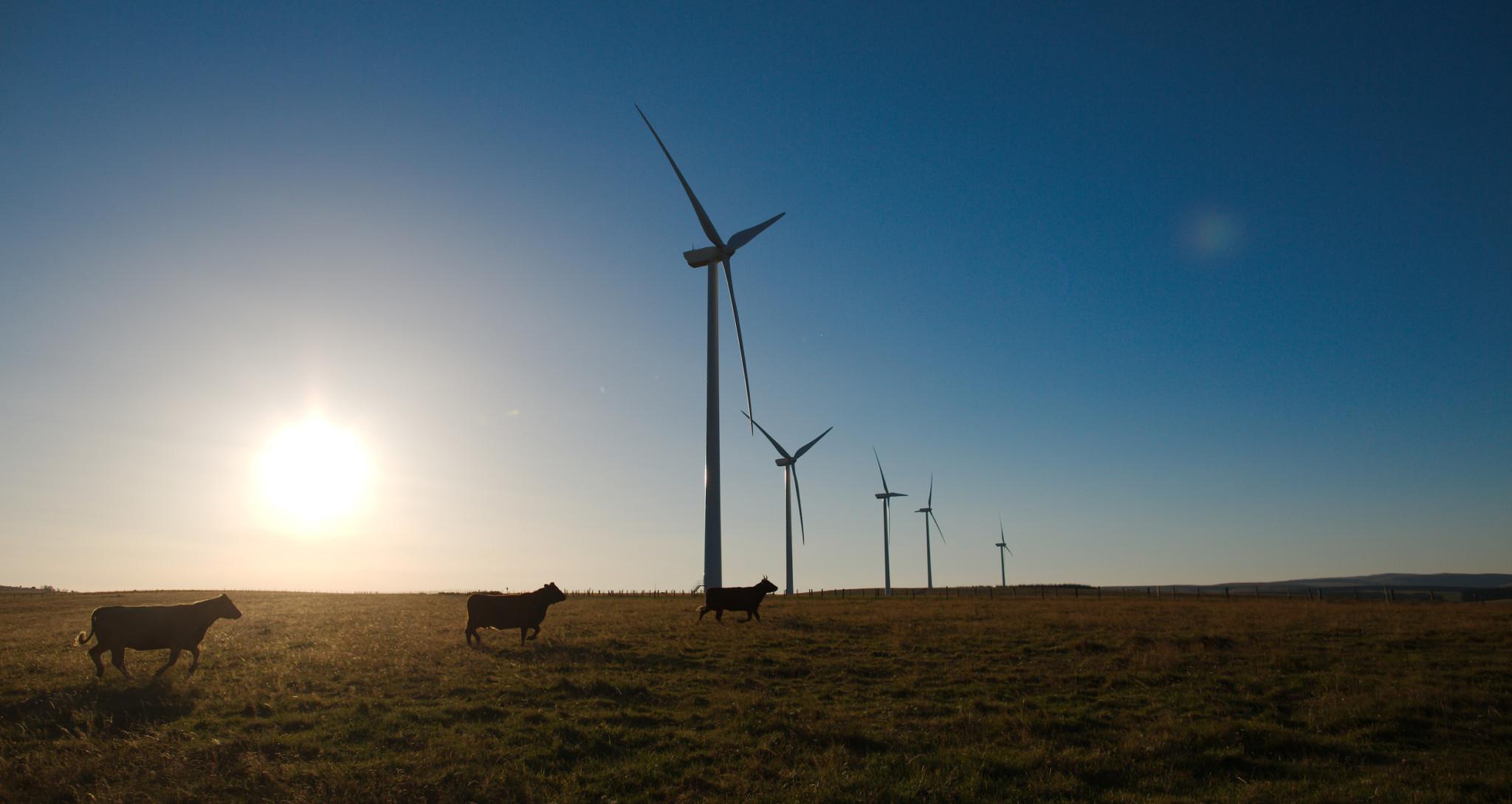 Les éoliennes d'Allanche
