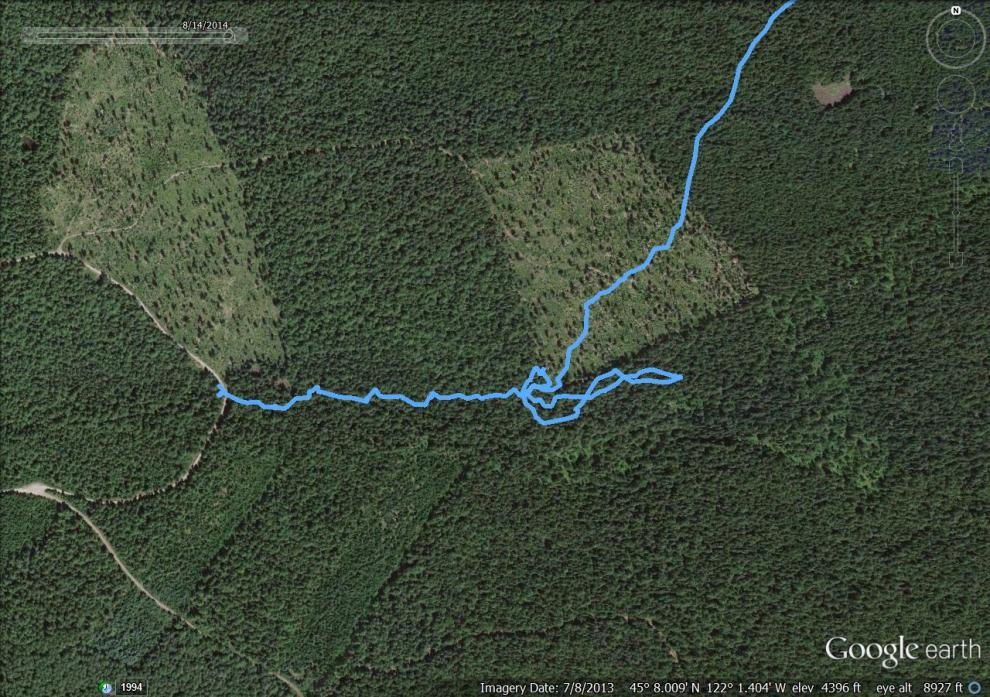 hiking-14Aug14-photo3.jpg