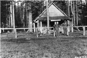 Olallie Meadows Cabin