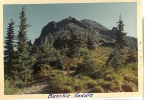 Beachie Saddle Trail - 1969
