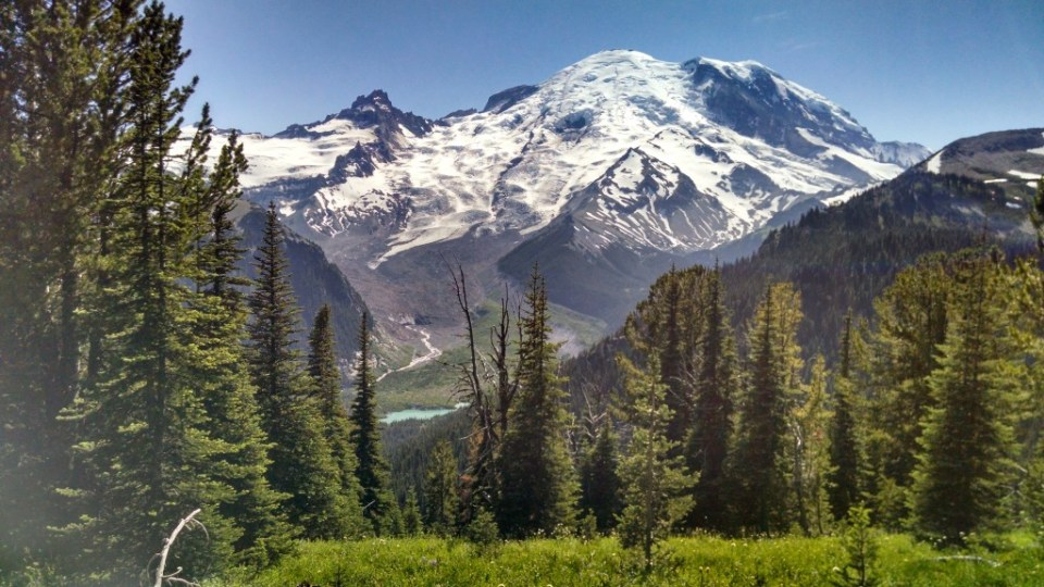 Mt Rainier Sunrise Trail