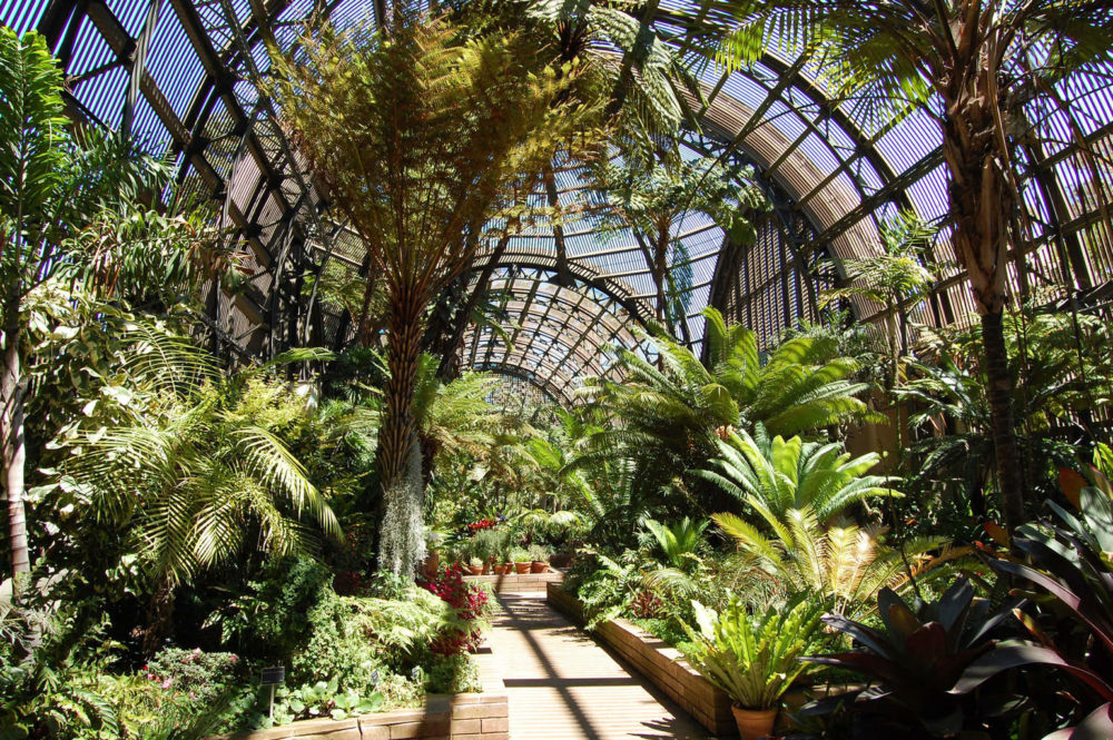 8 Free Things To Do At Balboa Park The Adventures Of