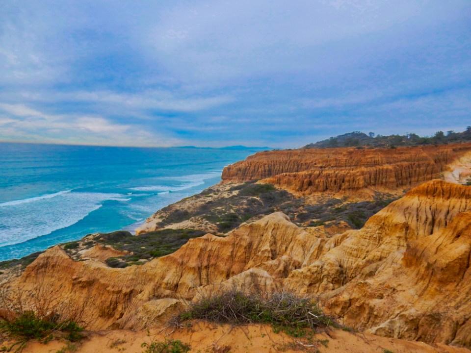 Torrey Pine Cliffs