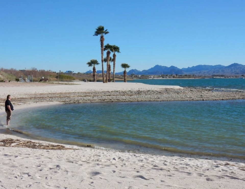 Wading in Lake Havasu