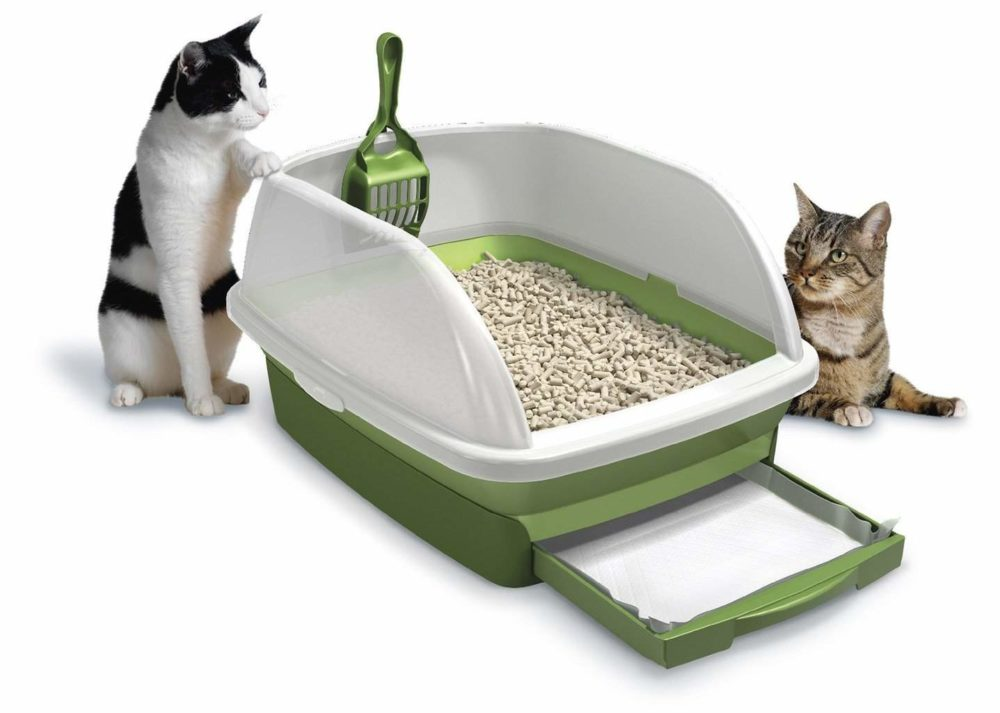 Traveling Cats The Litter Box The Adventures Of Trail