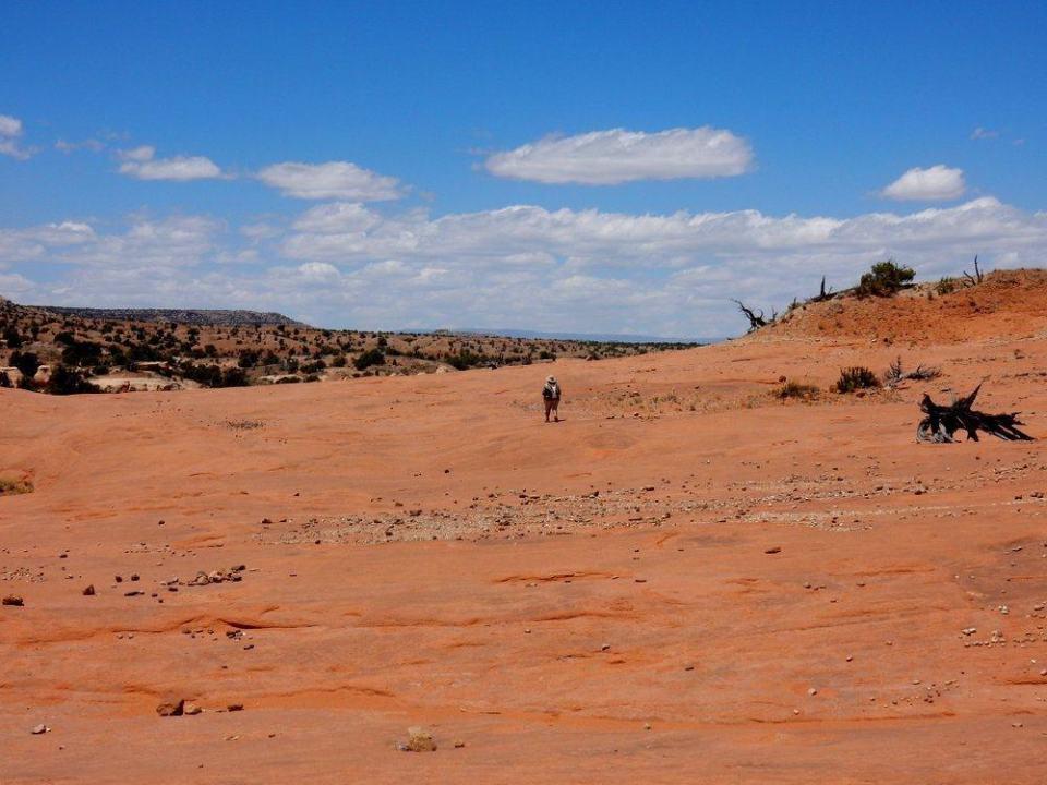 Slickrock of Petrified Sand Dunes