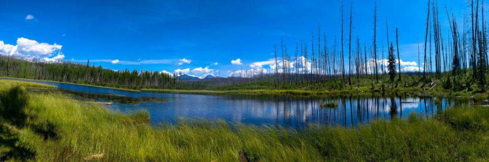 Howe Lake Pano