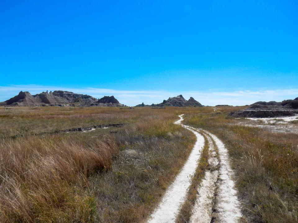Medicine Root Trail