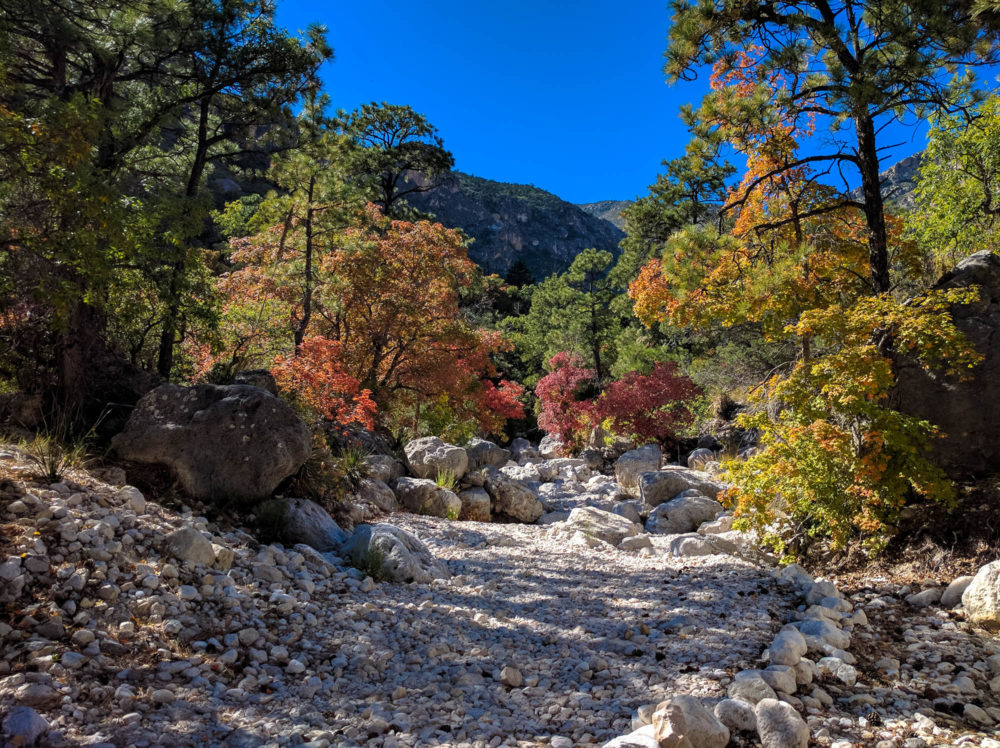 Guadalupe Mountains National Park The Adventures Of