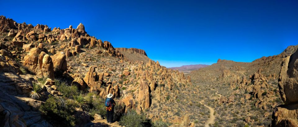 Grapevine Hills - looking back at the trail