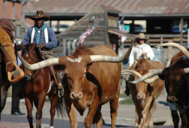 Stock Yards Dallas TX