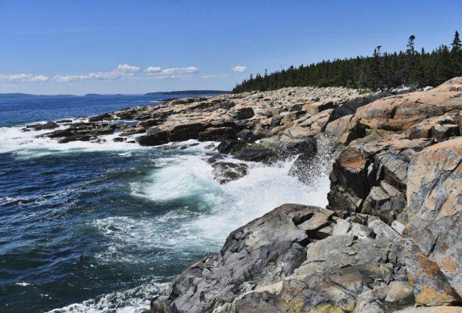 Rocky Coastline of Acadia