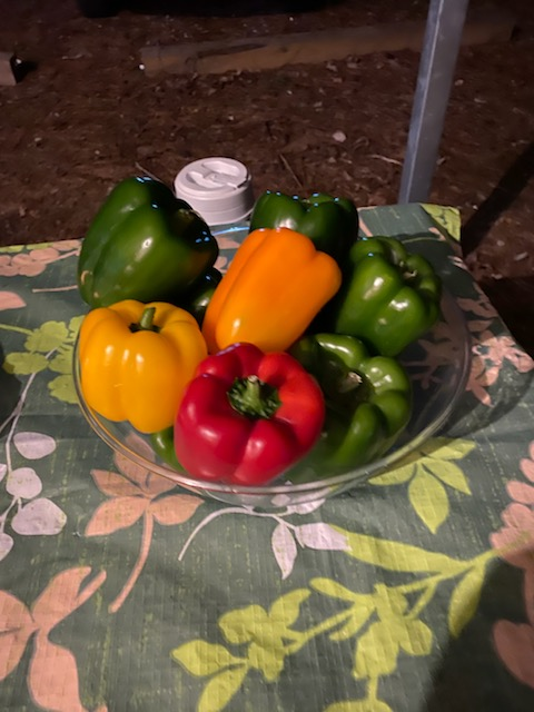 photo of a bowl of bell peppers