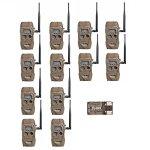 Cuddeback CuddeLink J Series Long Range IR Trail Camera (12-Pack) | 20 Megapixels | Built-In Wireless Network
