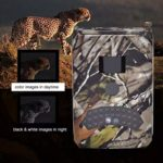 KTYX Ready to Use Trail Camera,12MP 1080P Mini Hunting Cam Motion Activated Night Vision No Glow IR LED IP54 Waterproof Cam for Wildlife Scounting Home Security Outdoor Surveillance Hunting Camera