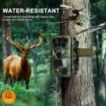 Generic002 Outdoor Waterproof Trail Camera 16MP 1080P Game Hunting Cameras with Night Vision Motion Activated Infrared Deer Cam for Wildlife Scouting Home Security Farm Monitoring (Color : 32G)