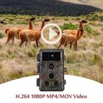6pcs 20MP 1080P Trail Camera Wildlife Cam with 120° Wide Angle Night Vision IP66 Waterproof 0.1S Trigger Time, Password Protected