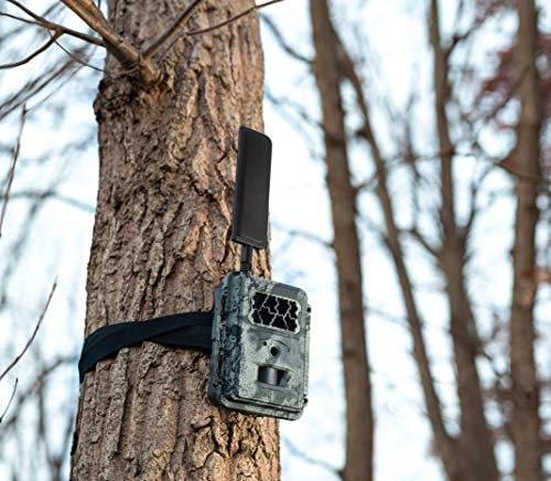 Spartan 4G LTE GoCam Wireless Trail Camera with Mount, Verizon Blackout (AT&T Also Available)