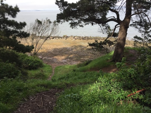 Saturday, June 24, 2017 - Coyote Point Recreation Area