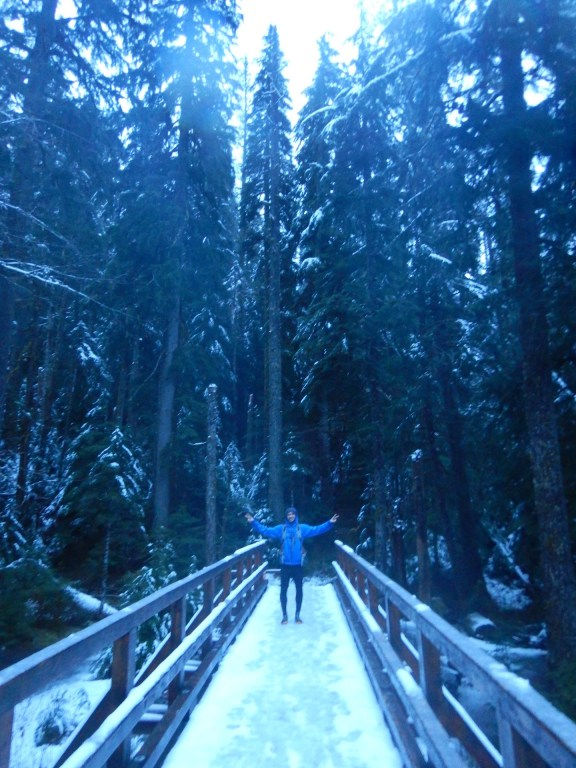 The bridge that crosses to the Goldmyer property. Gorgeous with a dusting of snow!
