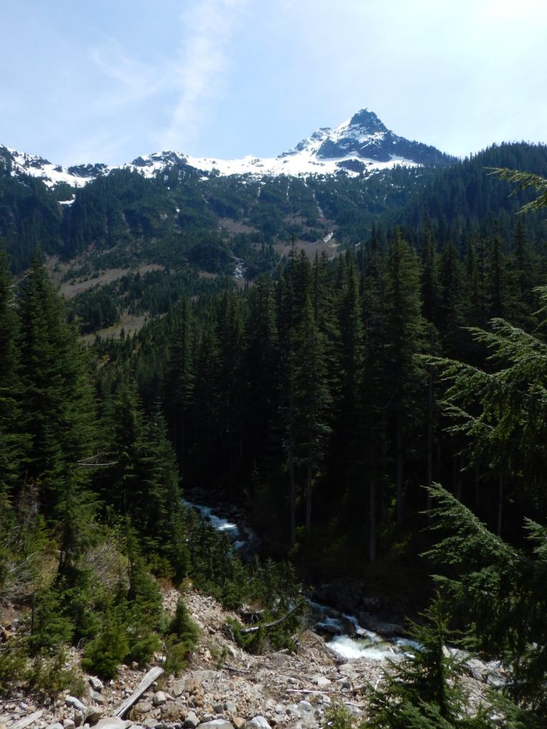 Everytime I think the Middle Fork Valley couldn't possibly get any prettier, it somehow manages to do so!