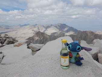 Summit celebration with Stitch!