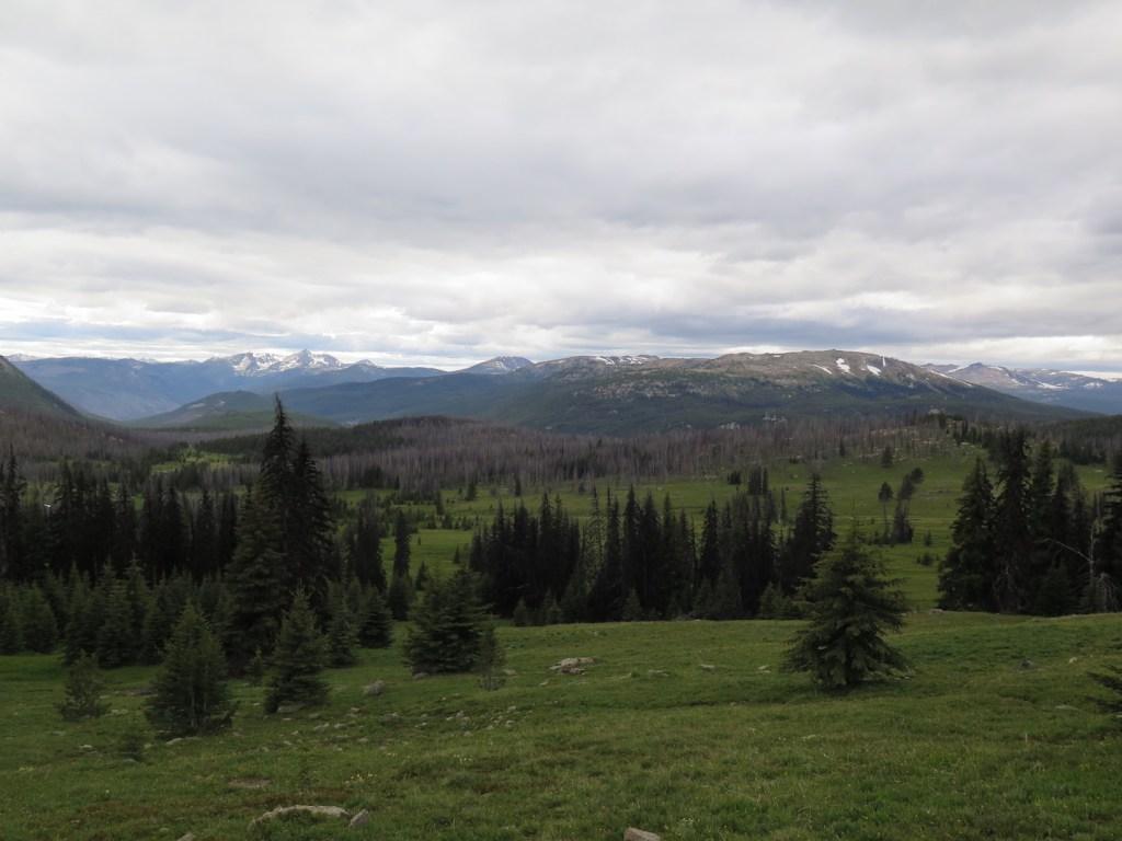 The meadows of Horseshoe Basin from near Sunny Pass
