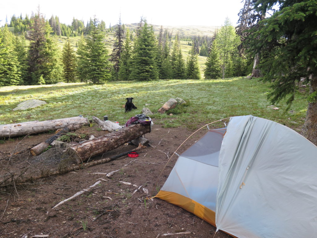 Our fantastic little camp spot near the Smith Lake junction gave us lots of privacy and wind protection. Despite others camping nearby, I never saw or heard anyone all weekend!