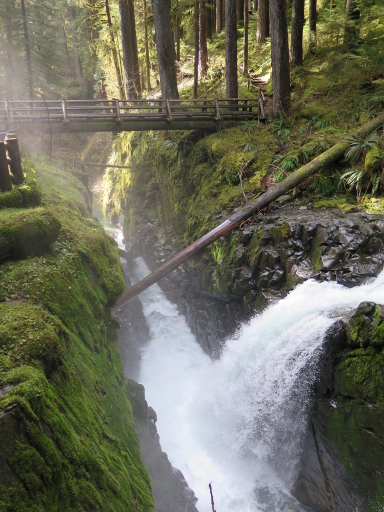 Beautiful Sol Duc Falls, a must see if you're visiting the hot springs. The 6 mile round trip hike is flat and easy. You can drive to a closer trail head and make it an easy walk, but then you miss all the magnificent forest!
