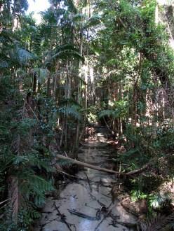 Wanggoolba Creek. Hard to believe this is on the same sandy beach island!