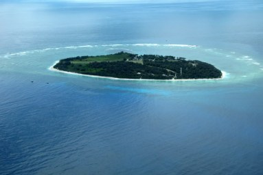 Lady Elliot Island - gorgeous!
