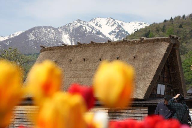 五箇山, 白川郷, 合掌造り, 世界遺産, gokayama, shirakawago, world heritage, by Disco-4@東京