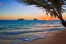 Oahu Hotel Offers Exclusive Hotels Trailfinders