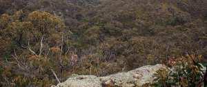 Ingliston-Gorge