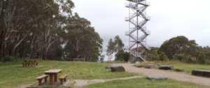 Donna-buang-picnic-area