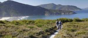 wildernesscoast