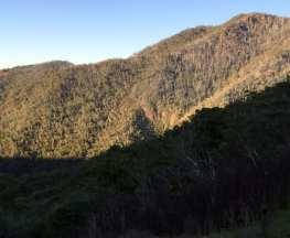 Eagle-Peaks-and-Eight-Mile-Spur