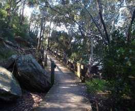Alma Road to Padstow along Salt Pan Creek
