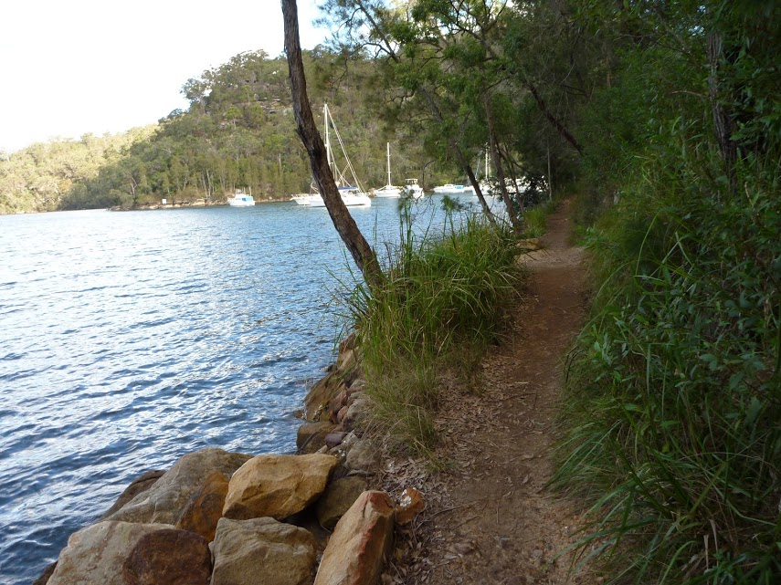 Bobbin Head to Mt Kuring-gai via Apple Tree Bay