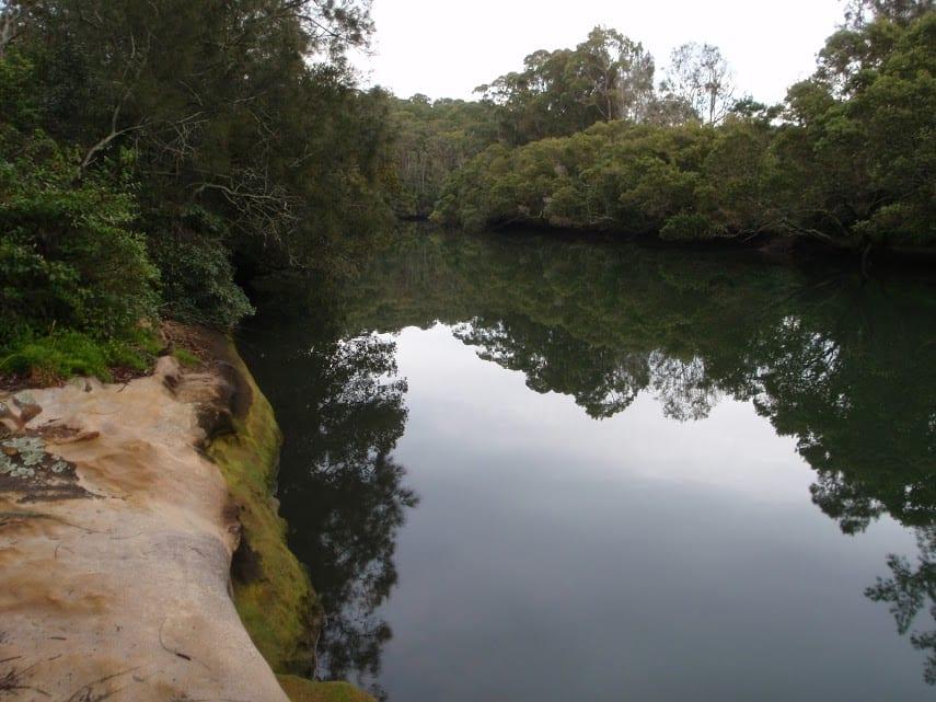Fairylands Loop Track