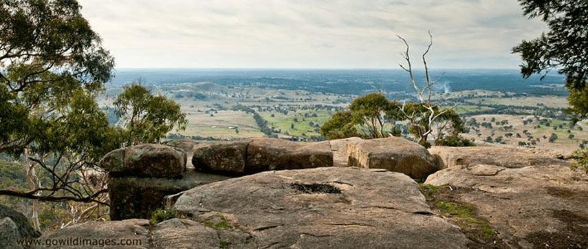 Great Dividing Trail Leanganook Track 60km Trail Hiking Australia