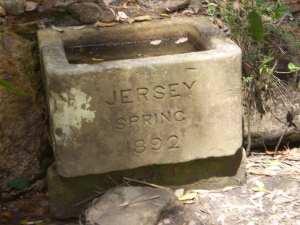 Jersey Spring