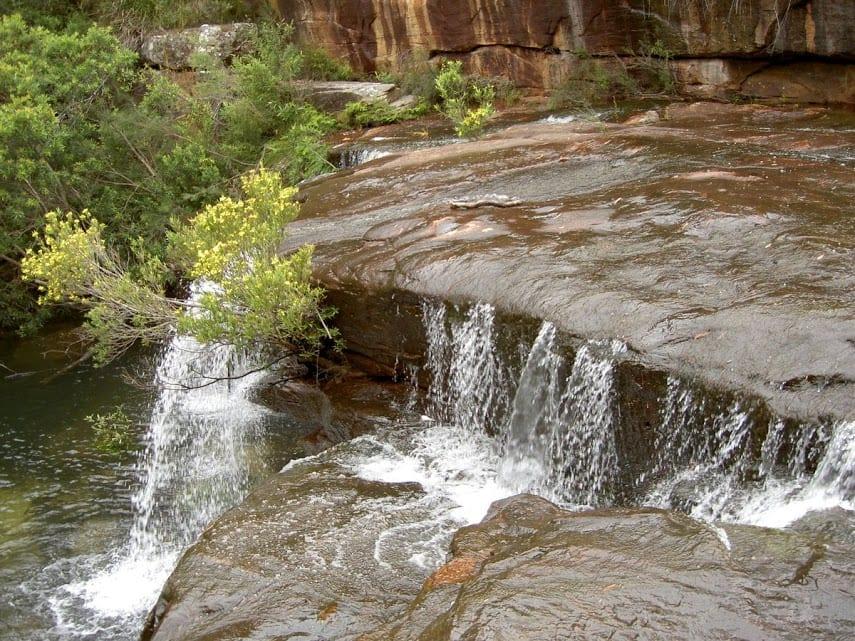 Mt Bass- Winifred Falls