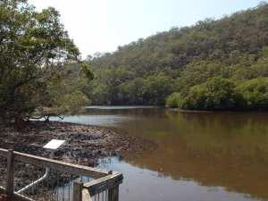 Wahroonga to Mt Kuring-gai