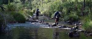 Wongungarra-River-2