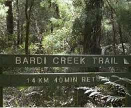 Bardi Creek Trail