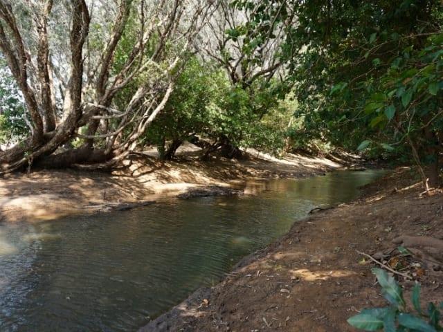Bun.gu Trail
