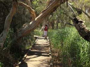 Eaton Foreshore Walk