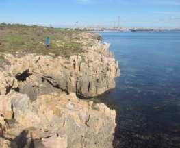 Henderson Cliffs Walk Trail