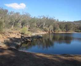 Kangaroo Trail